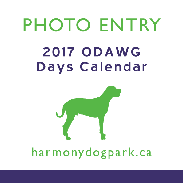 2017 ODAWG Days Calendar Entries