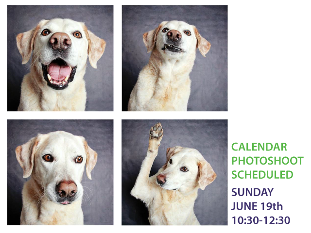 Calendar Photoshoot June 19th
